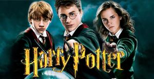 Comprar Merchandising Harry Potter